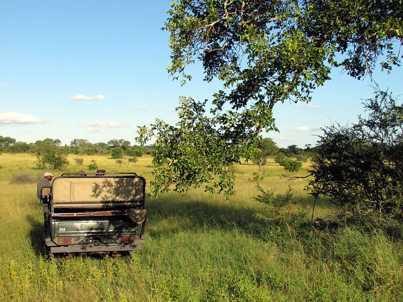 10 Things You Should Know About The Greater Kruger National Park